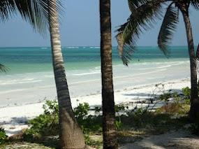 zanzibar_Zanzibar 1